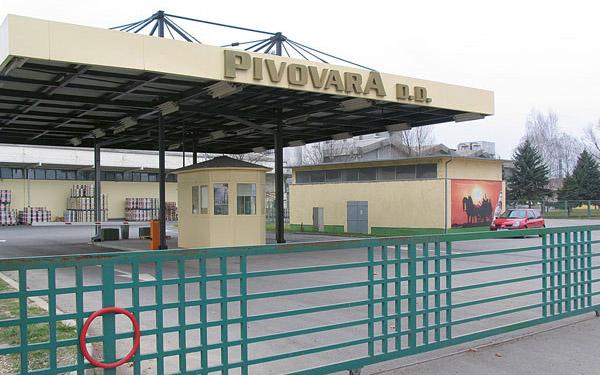 Pivovara